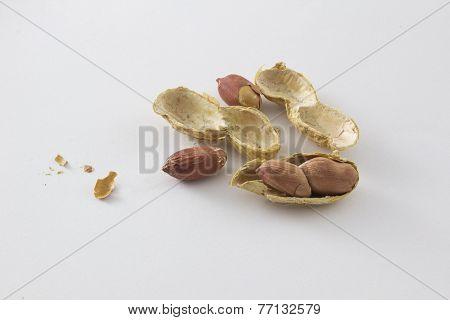 peanut6
