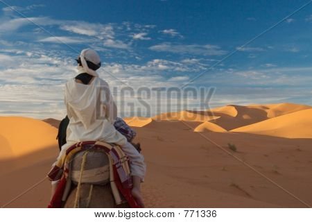 Tourist in sahara