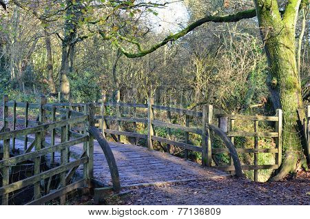 Rustic countryside footbridge.
