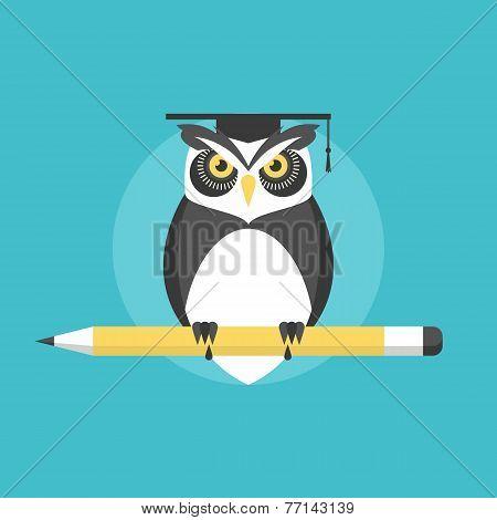 Owl Knowledge Flat Icon Illustration