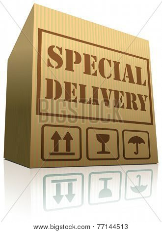 special delivery package shipping from online web shop order cardboard box with text