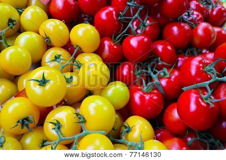 Red and Yellow tomato's