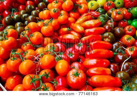 Different tomatos