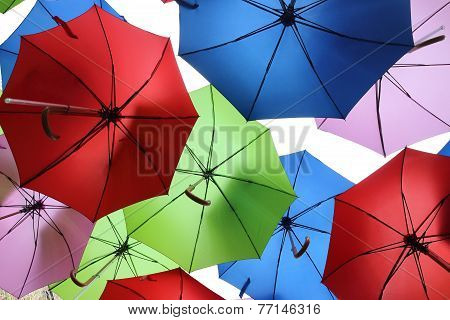 Colourful umbrellas hanging on White background