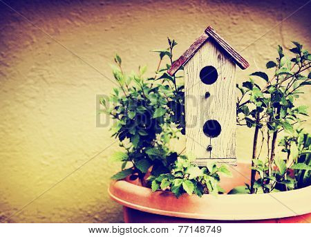 a cute bird house in a pot with plants toned with a retro vintage instagram filter