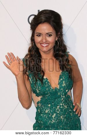 LOS ANGELES - NOV 23:  Danica McKellar at the 2014 American Music Awards - Press Room at the Nokia Theater on November 23, 2014 in Los Angeles, CA