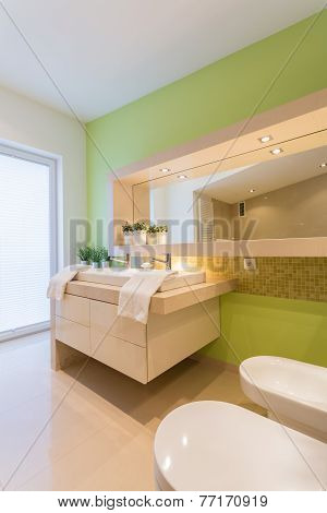 Green Painted Wall In Bathroom