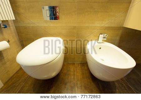 Lavatory And Bidet