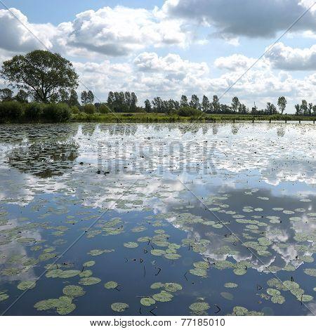 Clouds In A Lake.