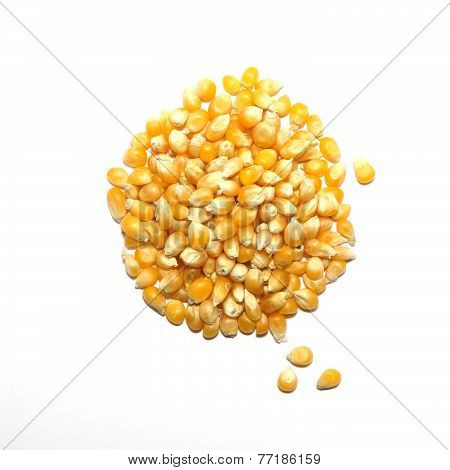 Dried Food - Popping Corn
