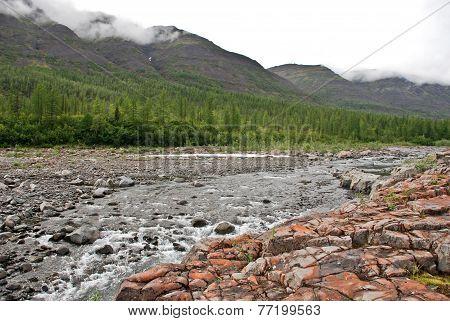 Canyon On The River. The Putorana Plateau.