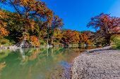 pic of guadalupe  - Intricate Intertwined Cypress Tree Roots with Beautiful Fall Foliage on the River at Guadalupe State Park, Texas.  Clear water and gravel banks.