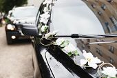 picture of generous  - The car in wedding cortege decorated with flowers - JPG