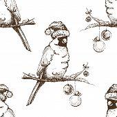 stock photo of cardinal-bird  - Red cardinal bird in Christmas cap - JPG