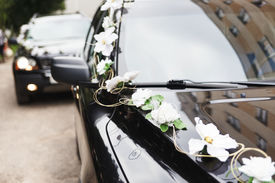 stock photo of generous  - The car in wedding cortege decorated with flowers - JPG