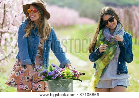 Two Beautiful Young Women With A Vintage Bike In The Field.