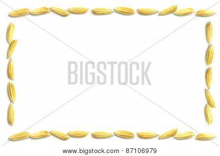 Yellow Paddy Jasmine Rice