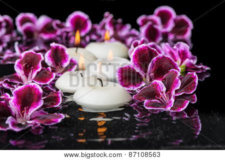 Beautiful Spa Concept Of Geranium Flower And Candles In Ripple Reflection Water, Royal Pelargonium,