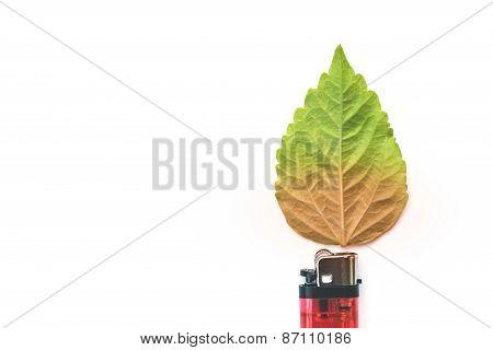 Lighter With Green Leaf, Burn Concept