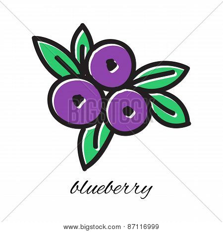 Hand drawn blueberry in doodle style. Vector illustration.
