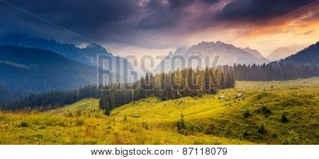 Great view of the foggy peak  Cresta di Enghe in Sappada. Dolomites Pesarine, South Tyrol. Location Sauris di Sotto, Italy, Europe. Dramatic overcast sky. Beauty world.