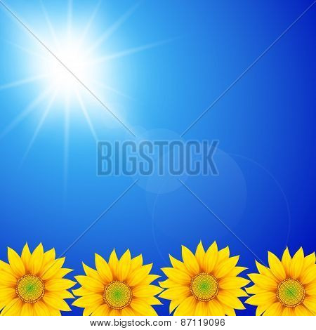 Sunflower In Sunny Sky Background