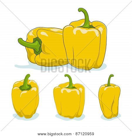 Yellow bell pepper,sweet pepper or capsicum