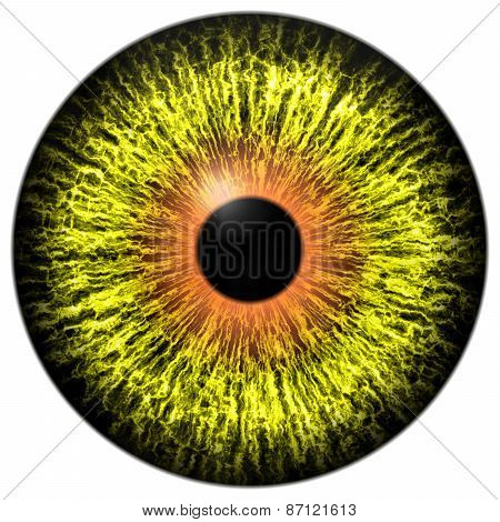 Yellow Alien Eye With Orange Ring Around The Pupil