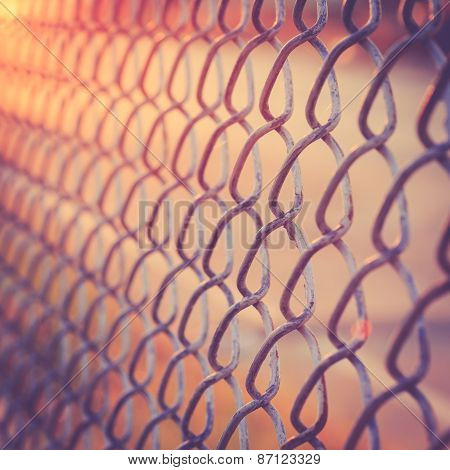 Metal Net In Sunset Time