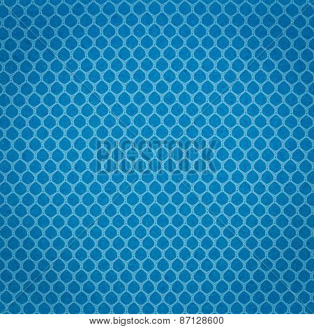 Texture Blue Sponge With Net For Dish Cleaning