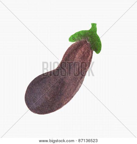 Hand-drawn eggplant. Real watercolor drawing. Vector illustration.