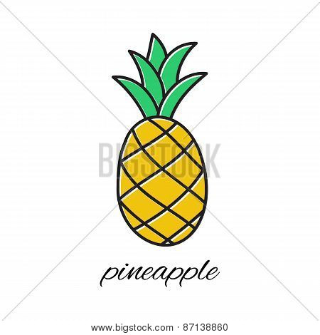 Hand drawn pineapple in doodle style. Vector illustration.