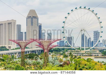 Singapore Supertrees And Flyer