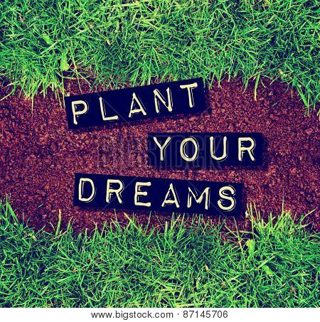 plant your dreams text on top of dirt and grass toned with a retro vintage instagram filter app or action