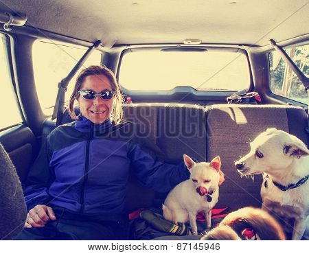 a snapshot of a girl in the back seat of a car with 3 dogs on a winter day toned with a retro vintage instagram filter effect app or action