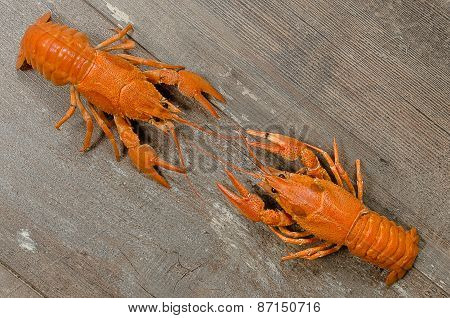 Two Red Crayfishes Wrestling On Old Wooden Table