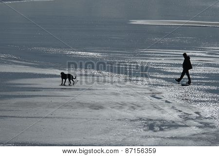 Man and dog on beach at low tide.