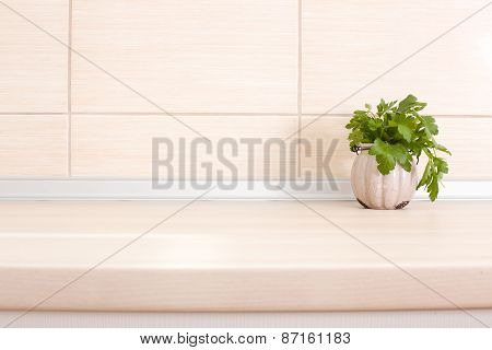 Parsley On Countertop