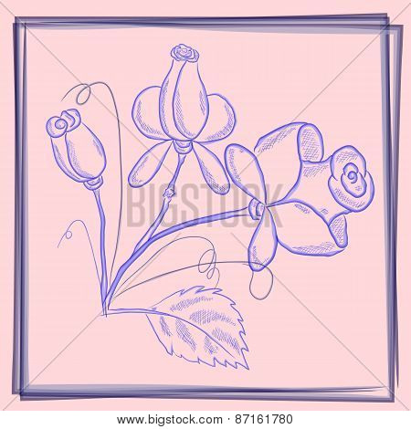 Postcard Blue Roses