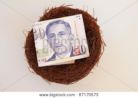 Singaporean Money in a Nest