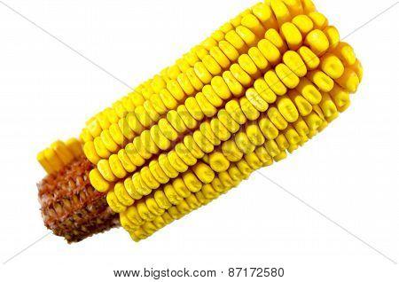Corn Cob Isolated