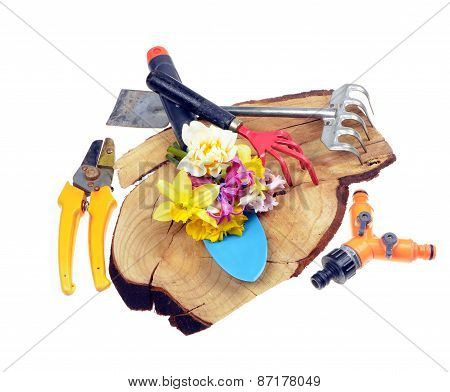 Gardening toolsflowers on old wooden stand