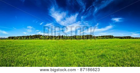 Panorama of summer meadow pastoral idyllic serene scene. Bavaria, Germany