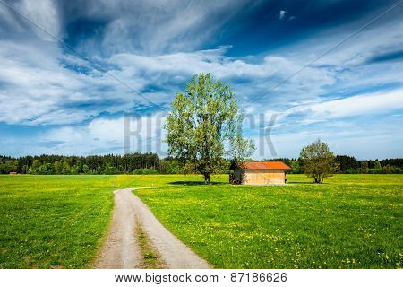 Parstoral European scene - rural road in summer meadow, tree and wooden shed. Bavaria, Germany