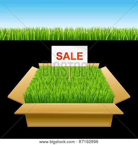 Open box with green grass. Sale 10eps