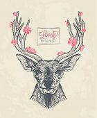 pic of deer head  - hand drawn deer head with flowers vector illustration - JPG