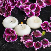 pic of geranium  - beautiful spa still life of geranium flower and candles in ripple reflection water Royal Pelargonium closeup - JPG