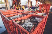 stock photo of fresh water fish  - Close up fresh fish in red basket and defocused of worker - JPG