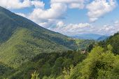 picture of naturel  - Parc naturel regional des Pyrenees ariegeoises at Riverenert France - JPG