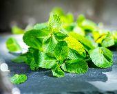 stock photo of mints  - Mint - JPG
